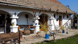 Az első tavaszi hétvége, vár a Tisza-tó!