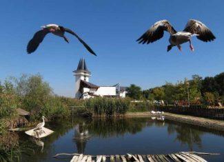 Minden nap gyereknap! :) De ma a kicsiké a Tisza-tó!