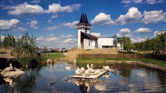 Az 5 legjobb októberi program a Tisza-tónál