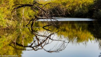 Őszi csónaktúrák a Tisza-tavon