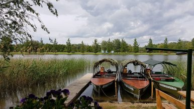 Tavitúra, Tisza-tavi vízi kirándulás – Tiszafüred