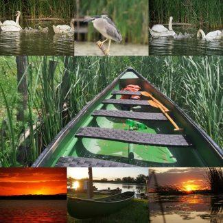 Csónakmotoros és evezős ökotúrák – Tiszaderzs