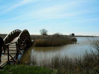 Górési madármentő hely lakóinak bemutatása, séta a tanösvényen – Hortobágy