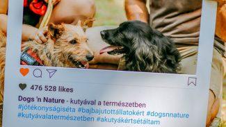 Dog's Nature – Kutyával a természetben