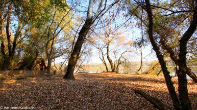 Tiszavirág Ártéri Sétaút őszi túra – Tiszaörvény