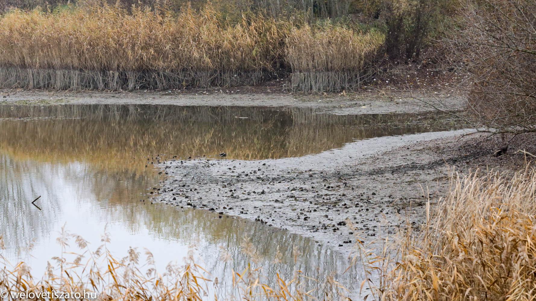 Tisza-tó télen - Tiszafüred Holt-Tisza