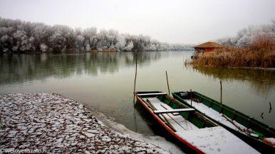Téli túra a Tisza-tó partján 2. – Tiszafüred ártéri erdeje