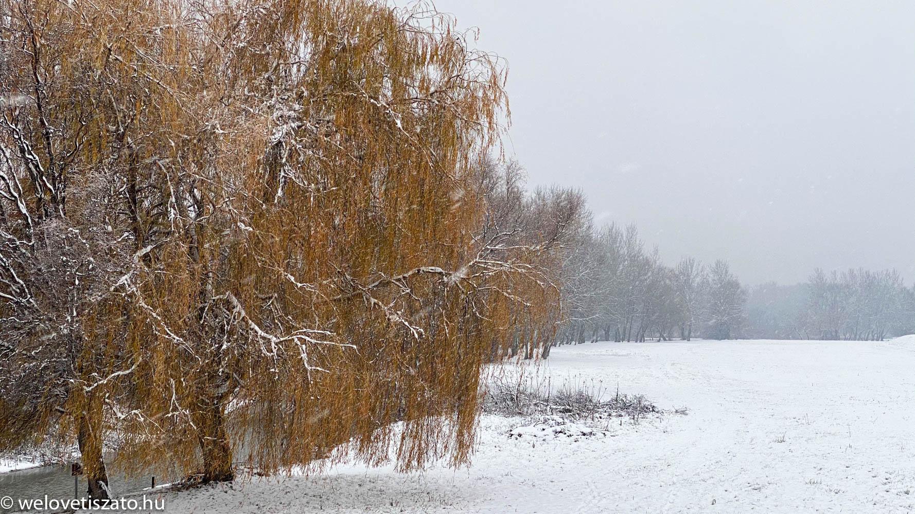 Tisza-tó téli túra