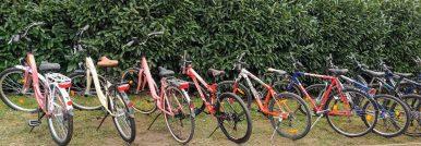 Tisza-Bringa Kerékpárkölcsönző – Abádszalók