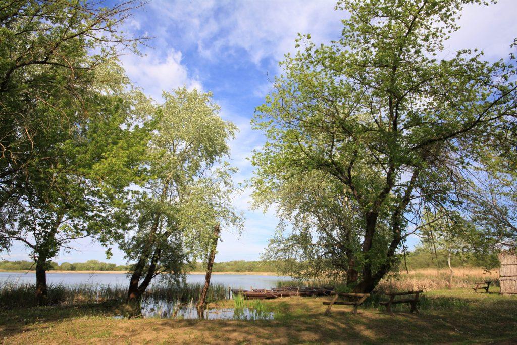 Tiszavirág ártéri sétaút